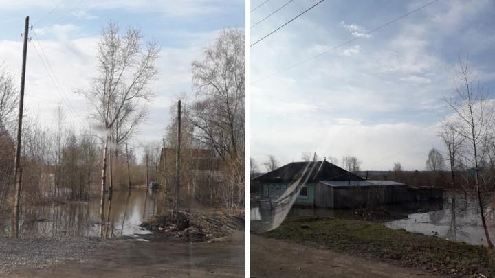 «Поплыла деревня». В Александровском районе во время паводка подтопило 50 домов