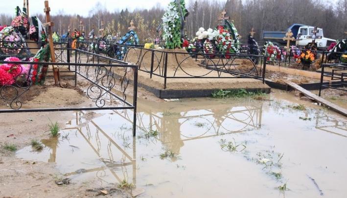 «Не исправят — будем штрафовать»: прокуратура проверила затопленное кладбище под Ярославлем