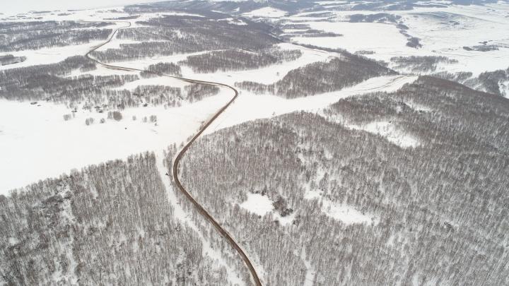 Красноярские ученые подожгли лес ради эксперимента