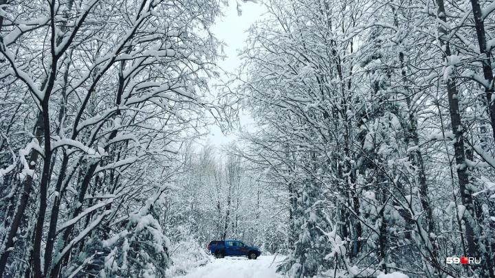 Потепление и снегопад. Рассказываем о погоде в Прикамье на выходные