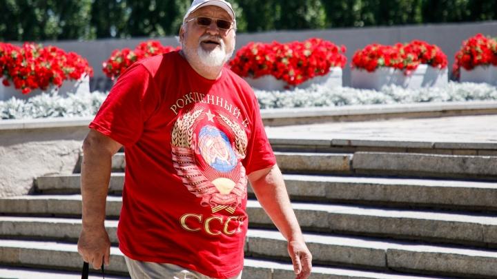 На первый матч чемпионата мира в Волгограде прилетели полчища мошек