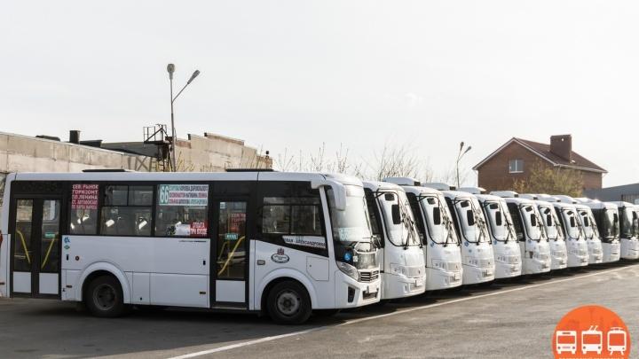 В Стройгородок, Александровку, Суворовский: на маршруты Ростова выходят новые автобусы