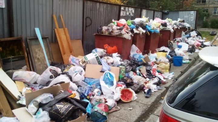 «Похитили деньги у челябинцев»: полиция возбудила дело о мошенничестве при вывозе мусора