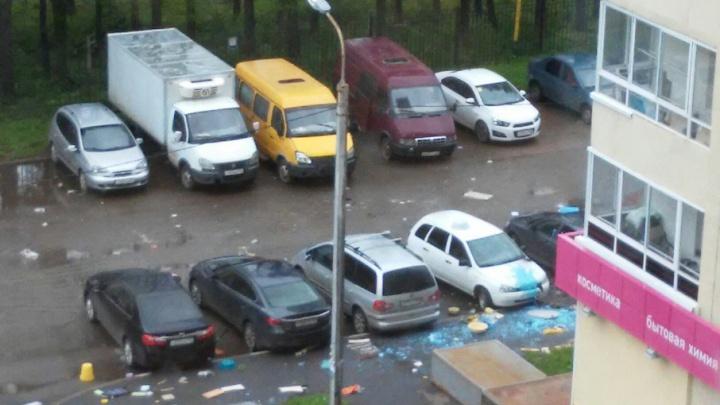 В Уфе задержали злоумышленника, облившего синей краской пять автомобилей