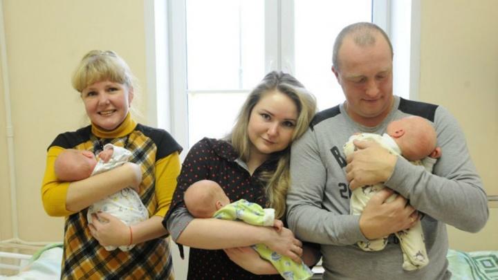 В Ярославле из перинатального центра выписали тройню. 5 нежных и трогательных фото