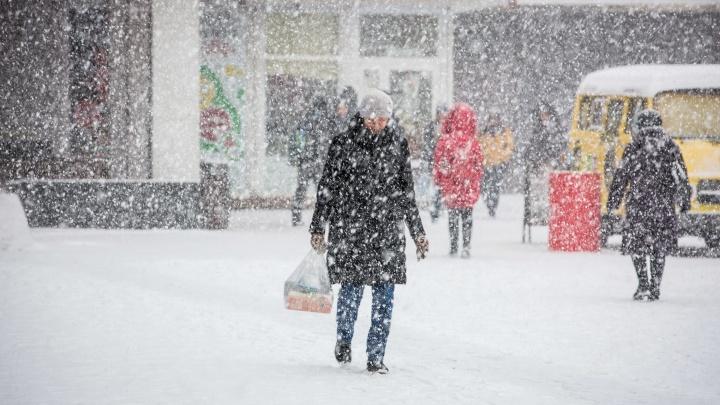 Ветрено и снежно: в Новосибирск придёт погода с резкими перепадами температуры