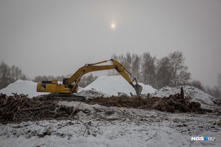 """Для строительства ЛДС вырубили деревья&nbsp;в пойме реки Оби. Из-за этого новосибирские активисты <a href=""""https://news.ngs.ru/more/65525201/"""" target=""""_blank"""" class=""""_"""">выходили на пикеты против</a> строительства"""