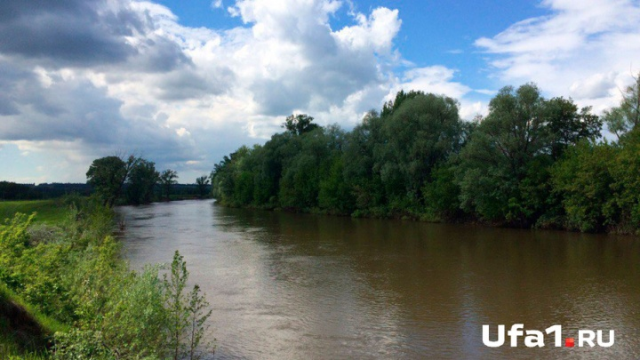 ООН восстанавливает болото в Башкирии