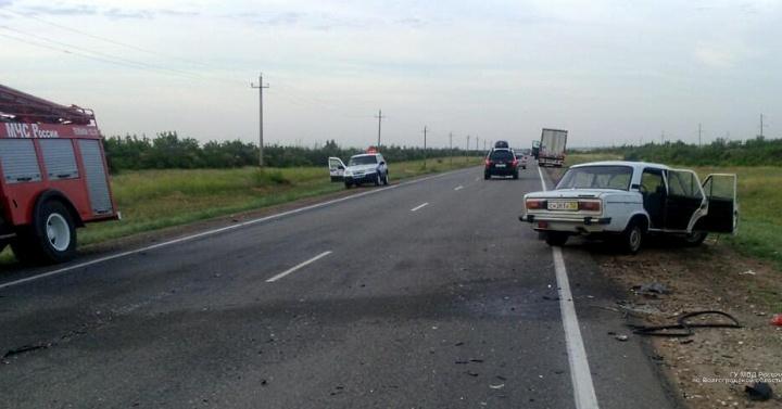 Один погиб, четверо ранены: выбежавший лось спровоцировал жуткое ДТП на трассе под Волгоградом