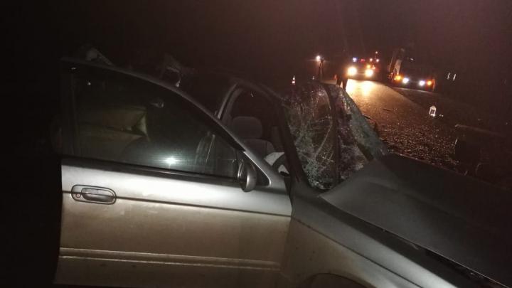 Три пассажира легковушки погибли при лобовом столкновении на трассе в Омской области