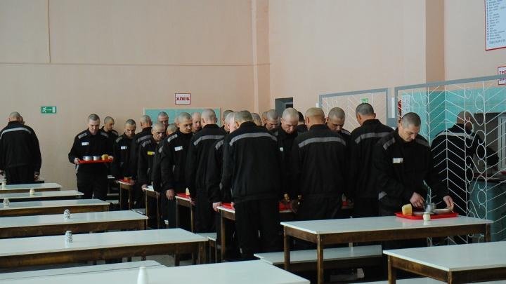 «Били и угрожали изнасилованием»: колонию на Урале проверяют после заявлений заключенных о пытках