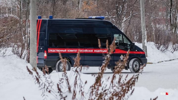 Напал утром на улице Елькина: в Перми мужчина в логу изнасиловал студентку