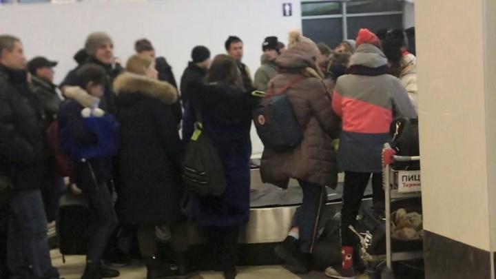 «Не считают нужным с людьми разговаривать»: толпа пассажиров час не могла забрать багаж в Толмачёво