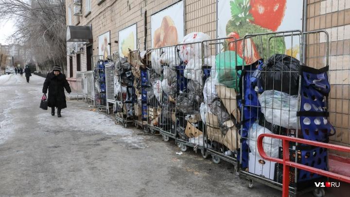 Тем, кто обнищал: бедным и многодетным волгоградцам дадут денег на откорм «мусорного короля»