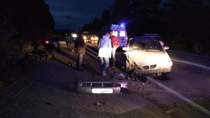 На Свердловской трассе из-за выбежавшего на дорогу лося лоб в лоб столкнулись два автомобиля