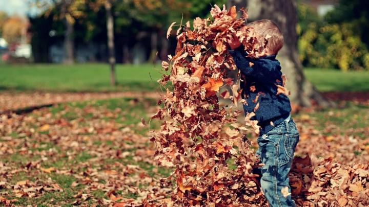 Эксперты назвали шесть причин купить квартиру этой осенью