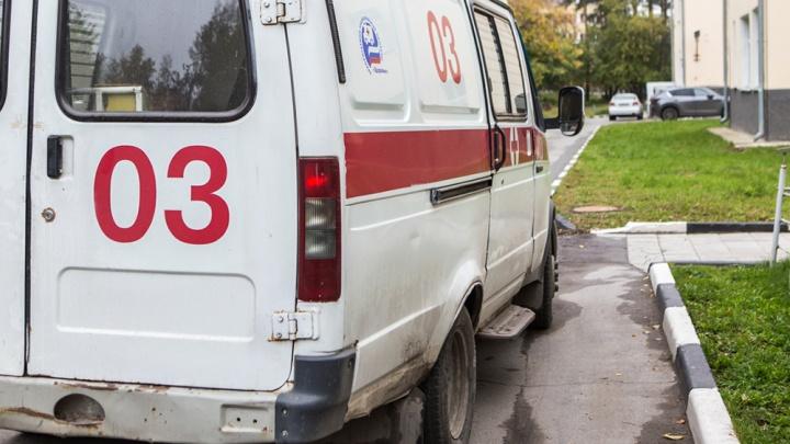 Подробности отравления 13 школьников в Новосибирской области: крысиный яд принёс ученик