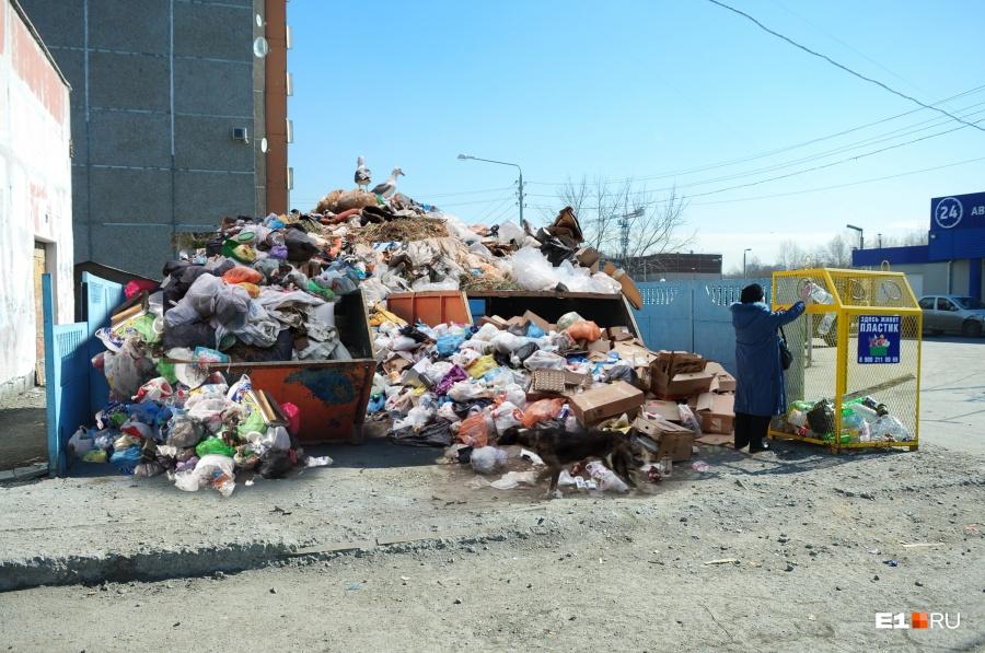 Человек попавший в мусорную машину