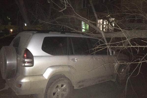 В трёх местах машины пострадали от упавших деревьев, а на улице Иванова на автомобиль рухнула крыша со строительного вагончика