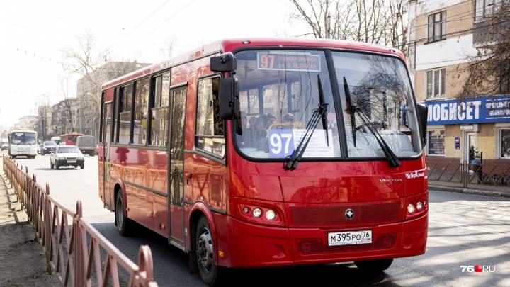 Ярославским маршрутчикам запретят кататься наперегонки: подробности о новом законе
