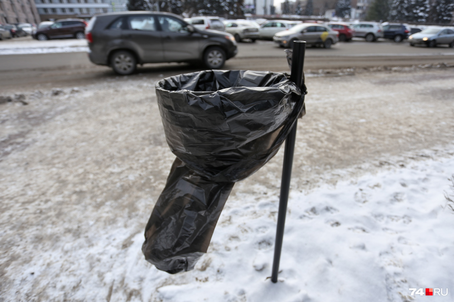 Чиновники говорят, что чёрные пакеты повесили дворники, скоро их заменят