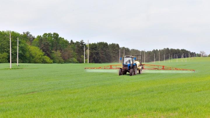 Первый агропромышленный парк появится в Свердловской области