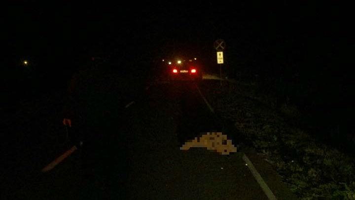 Не заметил в темноте: в Башкирии 62-летнего мужчину задавил водитель иномарки