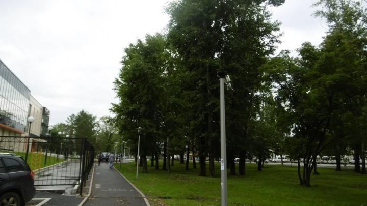 В Уфе вандалы разорили сквер 50-летия Победы