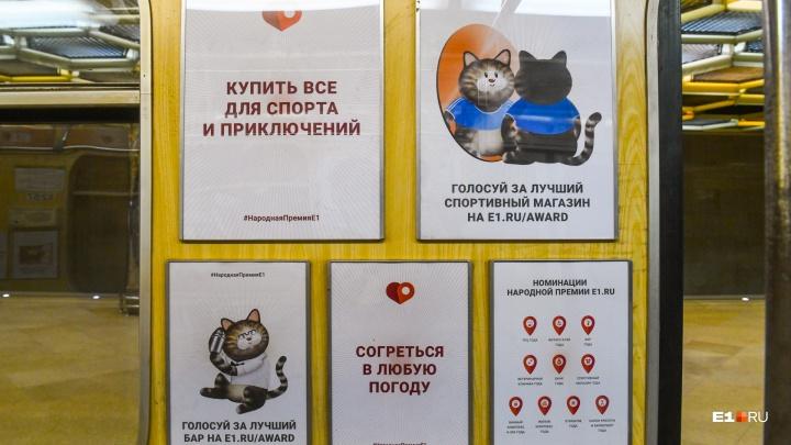 В метро Екатеринбурга появился необычный вагон с котиками