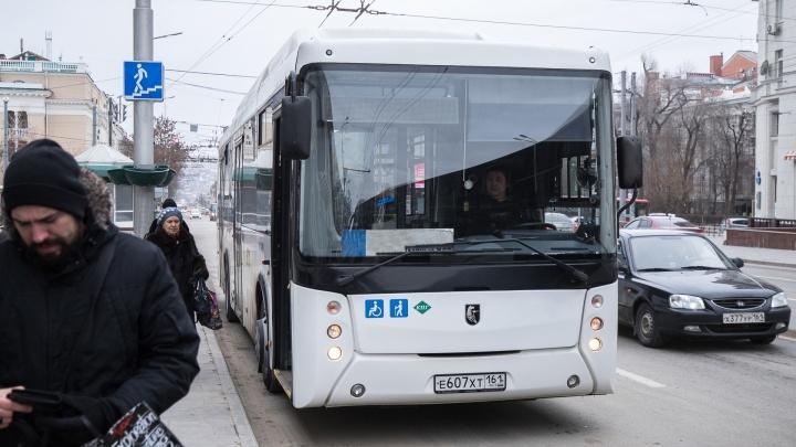 Большие и комфортные: на улицы Ростова выйдут 60 новых автобусов