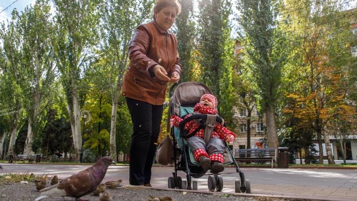 Волгоградская область проведёт выходные без дождей, с туманами и заморозками до -3 ºС