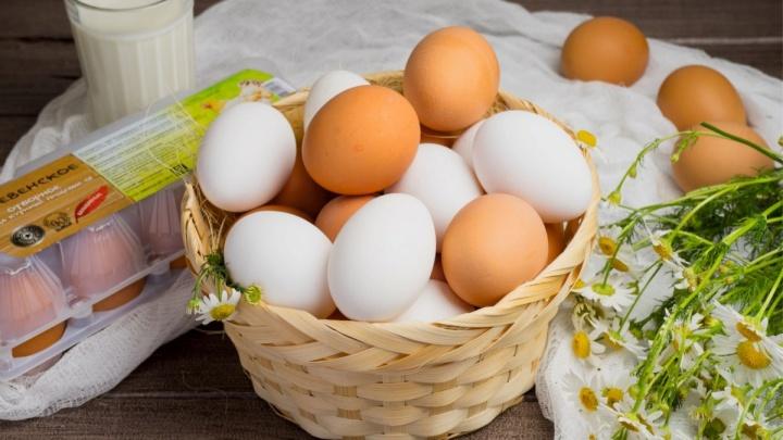 Птицефабрика из Кольцово вошла в тройку российских экспортеров яиц