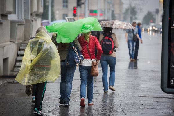 Дожди в Новосибирске закончатся только к четвергу