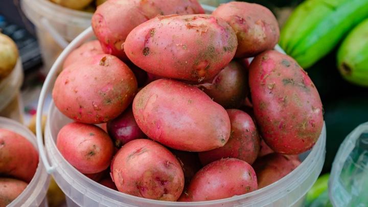 Пермьстат: в Прикамье подешевели картофель и капуста, но подорожали яйца