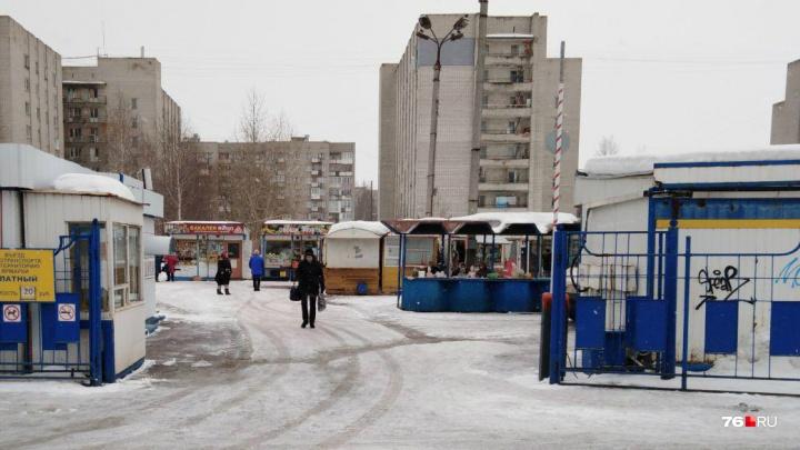 «Времена железных палаток прошли»: в Ярославле вместо мини-рынков построят торговые галереи
