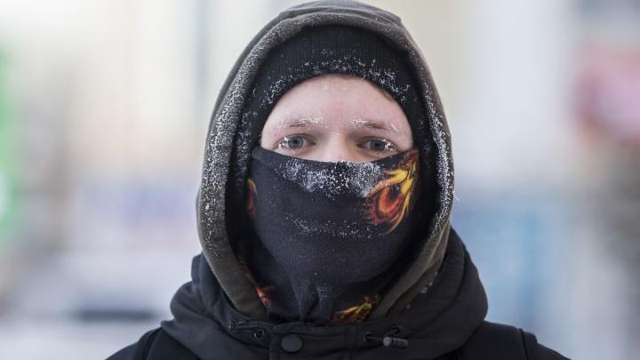 Достаём шубы: в Новосибирскую область идут 20-градусные морозы