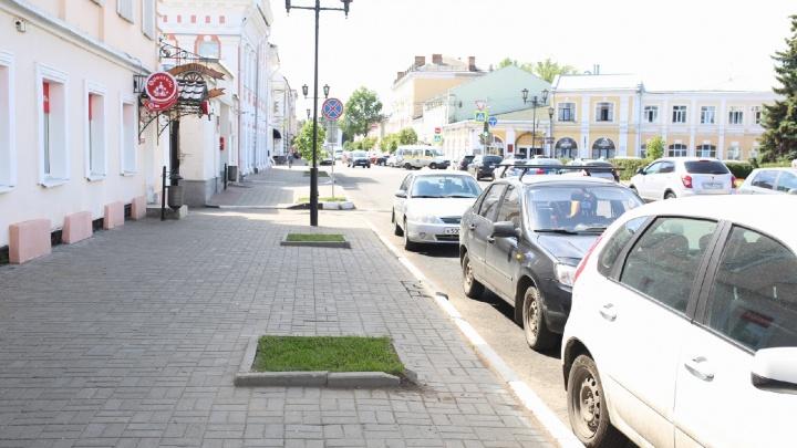 «Даже пеньков не оставили»: в центре Ярославля спилили деревья в прогулочной зоне