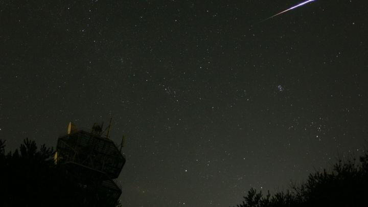 Уехать из города и смотреть на падающие звезды: ростовчане смогут увидеть поток Персеид