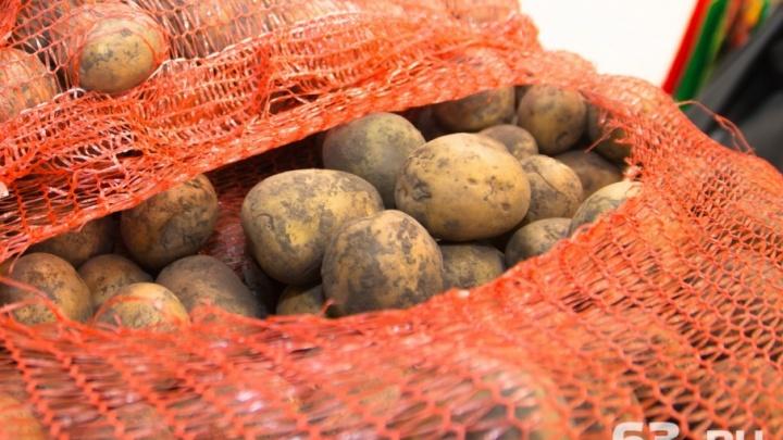 Быстрая и некачественная еда: в Самаре закрыли нечистоплотное кафе