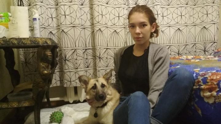 Слишком поздно: ветеринары нашли неизлечимую болезнь у собаки, которой помогли приехать из Иркутска