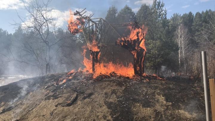 В «Затюменском» вандалы сожгли деревянную скульптуру лося стоимостью 400 тысяч