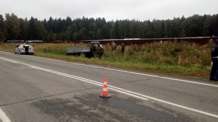 На трассе под Ревдой водитель УАЗика столкнулся с коровой и погиб на месте