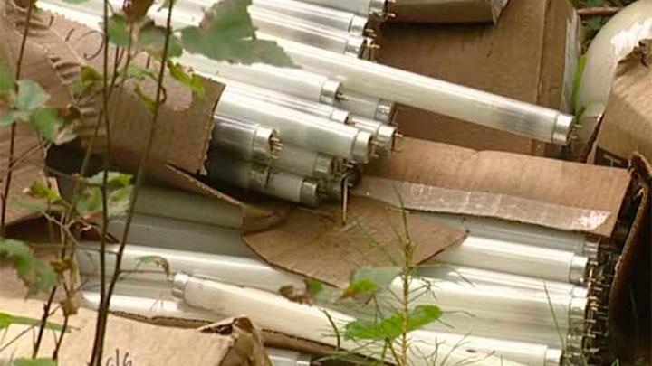 Выбросил смертельный металл у деревни: в Башкирии в лесу нашли 200 ртутных ламп