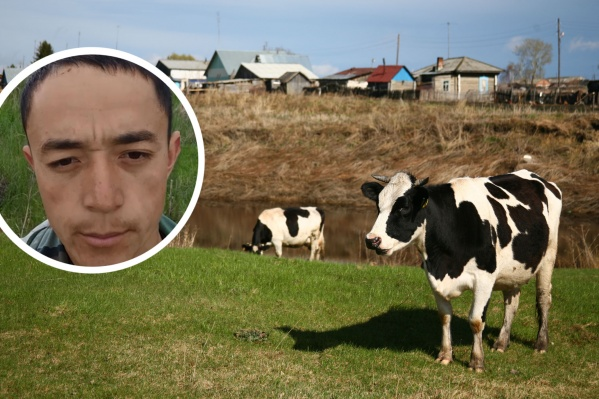 Жасурбек Мамараимов рассказал, что не может получить землю для своего скота