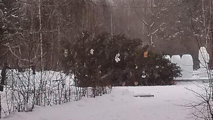В сквере Молодожёнов новогодняя ёлка рухнула на детскую горку