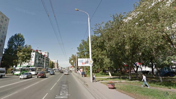 Напротив остановки «Рабиновича» высадят 40 новых деревьев