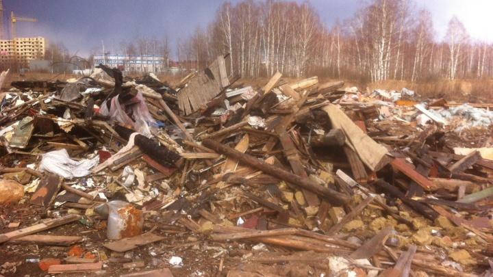 «Там жесть реальная»: в Заволжском районе больше 10 лет не могут разгрести незаконную свалку