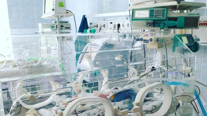 Всего 590 граммов! В тюменском перинатальном центре родился крохотный малыш