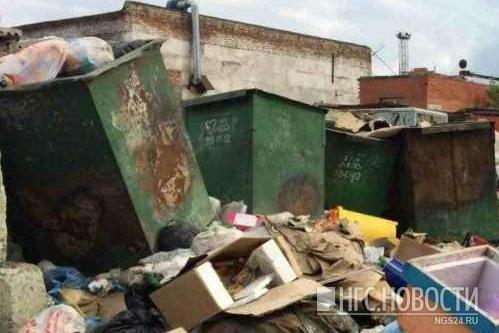 Такой беспорядок разводят на мусорках красноярцы