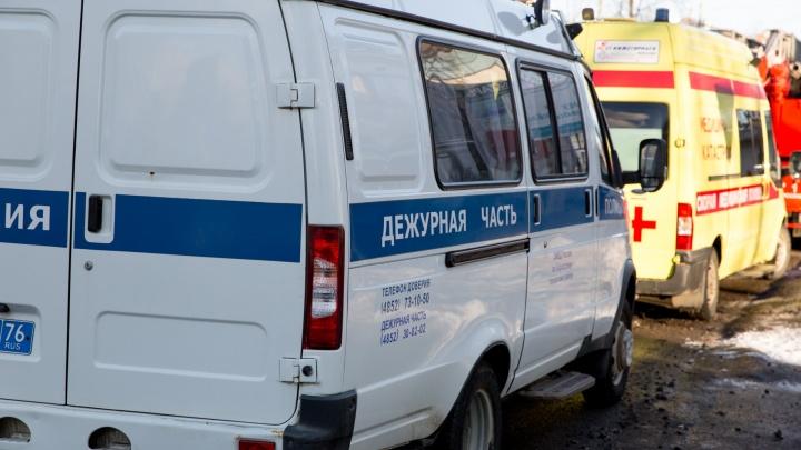 В Ярославле машина насмерть сбила пешехода с собакой